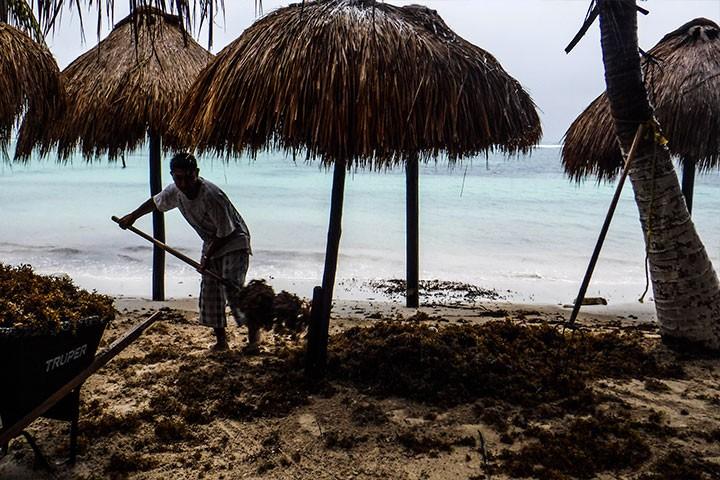 Franklin provoca caída de árboles y fuertes lluvias en México