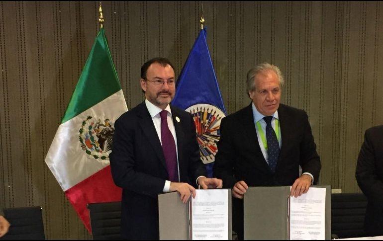 Vigilarán elecciones observadores de OEA